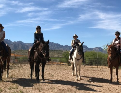 Staying In The Saddle – Equanimity in Action!