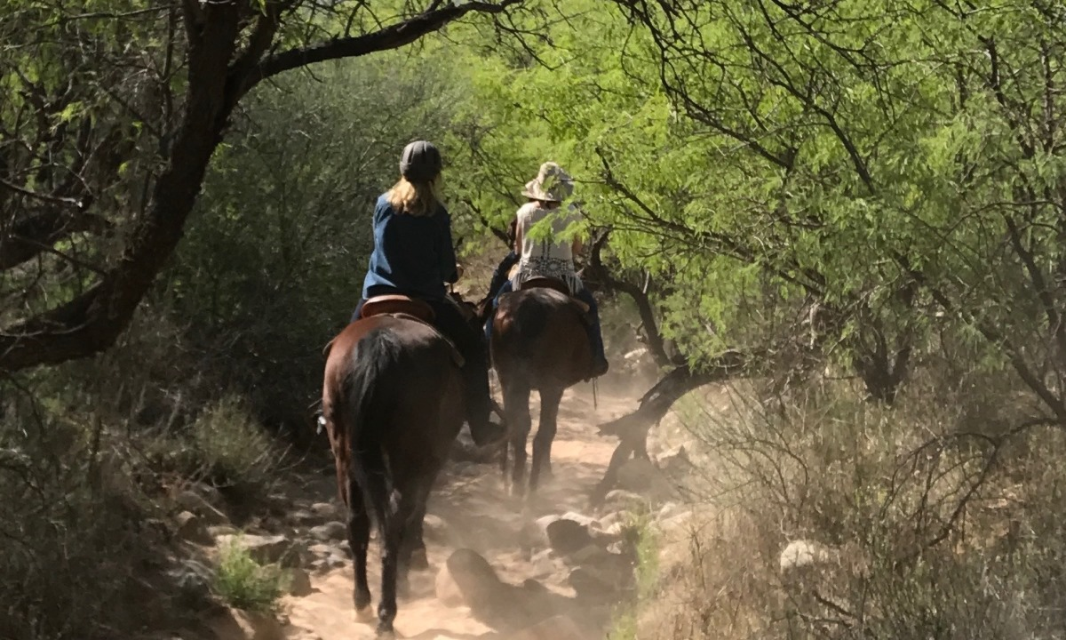 Julie Potker on a horse trail at Miraval Resorts Life in Balance Spa