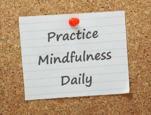 The Daily Practice of Mindfulness: Drop Into Mindfulness Throughout Your Day